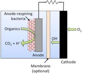 Struja proizvedena od organskog otpada Hemija