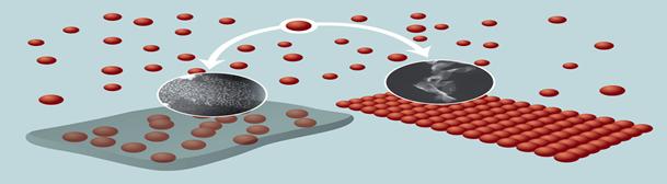 Novi tip solarnih ćelija u tečnom stanju Hemija