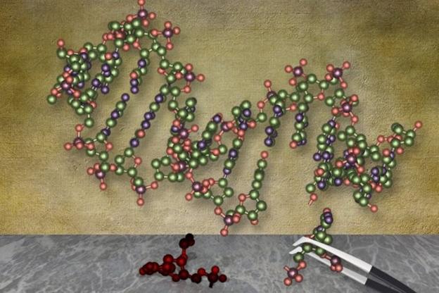 Brisanje genskih mutacija Biologija