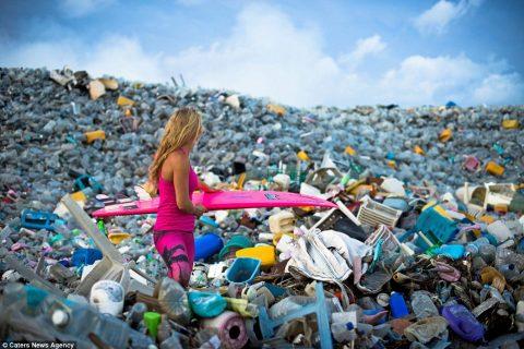 Gusjenice kao sredstvo za biorazgradnju plastičnih kesa