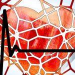 Vježbanje podmlađuje srce