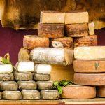 Život na siru