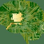 Uzgoj mozgova u laboratoriji