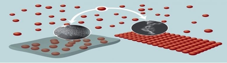 agregacija nanokristala kadmijum selenida