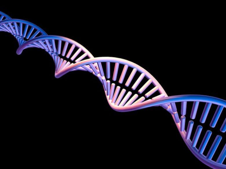 Četiri nova slova DNK- dupla životna abeceda